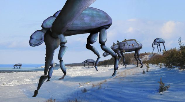 Big Bugs by DayPie