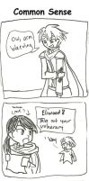 FE 7: Common Sense by torchicfan24