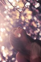 To sink in the light by satty-metamorph