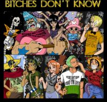 One Piece: BITCHES DON'T KNOW by c0rkydawL