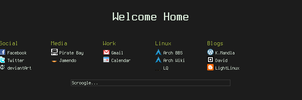 2010-04-29 Start Page by synorgy