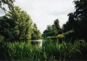 A lake in Kew Gardens, London by Lea-Li
