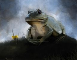 Bullfrog by mootchmonster