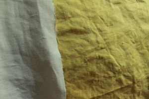 Natural dye experiment by l-heure-du-the