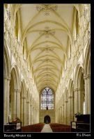 Beverley Minster rld 02 by richardldixon
