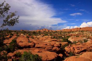 Arches National Park Scene 1 by Caloxort