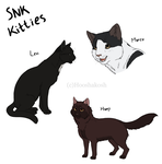 SNK KITTIES by Hooshakosh