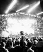 Woodstock 2012 01 by mr-kreciu