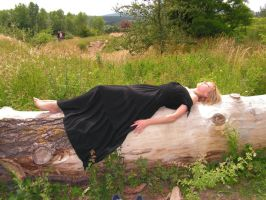 Laying on tree 3 by legionista-stock