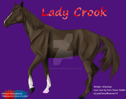 Lady Crook-2yr ref by patchesofheaven74