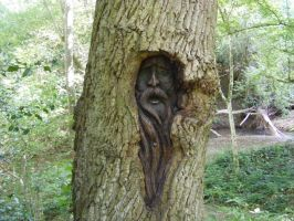 MORE OF THE GREENMAN WOODCARVING STOCK by Vee-Deviant