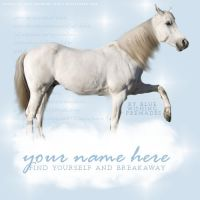 Layout - Blue Wishing Premade by ClearBlueSkys