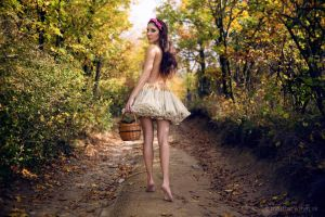Autumn Fairy 01 by riffmaker