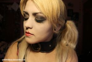 Harley Quinn: Arkham City Makeup by W0lfieRose