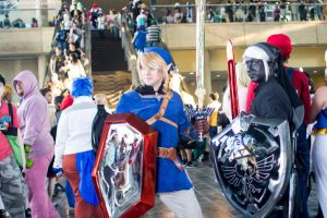 Otakon 2015 - Blue and Dark Link by VideoGameStupid