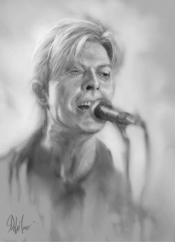 Bowie by SteveDeLaMare