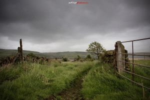 A view of Sowerby Bridge hills by 13104147