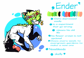 Ender Ref by silly-sweetness