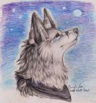 X.Moon by my Side.X by Lost-Wolf-Soul