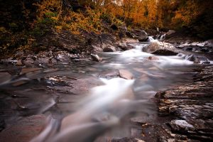 Autumn River by CalleHoglund