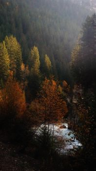 Fall in the valley by lucium55