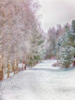 winter - finland by aamurusko-fi