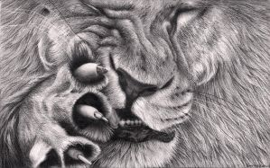Lion Itch by Bengtern
