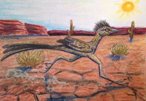 ACEO: Road Runner by DanielleMWilliams