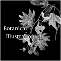 Botanical Illustrations 3 by butnotquite
