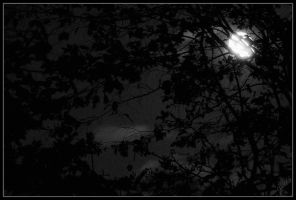 Bright moon by deaconfrost78