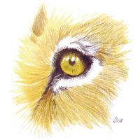 Eye am a lion by saraquarelle