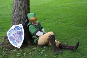 Sleeping Link by Juswana