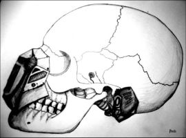 Cyberskull by posts