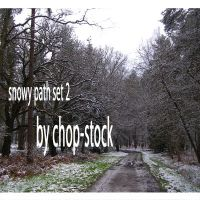 Snowy Paths 2 - stock set by chop-stock