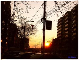 Sunset street by piticus41