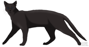 .:Crowfeather:. by Lithestep