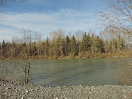 Vedder river south~1/26/2015~11 by Mathayis