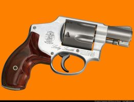 3Smith Wesson Centennial by VladiT