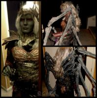 Lolth Costume 1 by GabbyLeithsceal