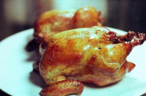 Roasted Chicken by aperture24