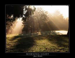 Morning Light by equuleus