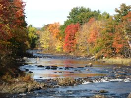 Oct 2008 on the Contoocook by crazygardener