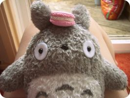 Totoro and the Macaron by KisforKatieRose