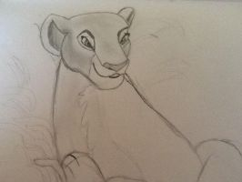 My nala drawing by TheRealSexyKate
