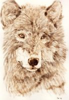 Wolf Pyrography by Everild-Wolfden