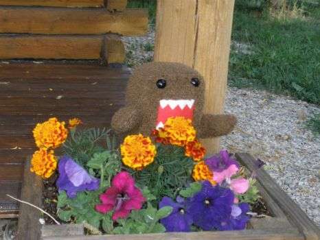 Domo likes flowers by ClaraKelley