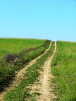 Road to the sky by attilapele