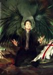 Avenging angel: Bruce by Brilcrist