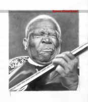 B.B. King by Spomo-U