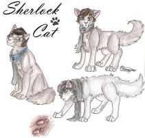 Sherlock Cat by lizzie9009
